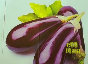 eggplantcard
